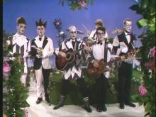 Split Enz, 1976, zolo as fuck